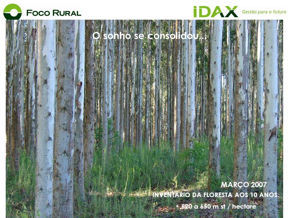 MARÇO 2007 O sonho se consolidou... INVENTÁRIO DA FLORESTA AOS 10 ANOS: 620 a 650 m st / hectare
