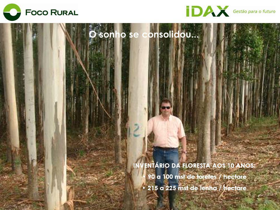 INVENTÁRIO DA FLORESTA AOS 10 ANOS: 90 a 100 mst de toretes / hectare 215 a 225 mst de lenha / hectare O sonho se consolidou...