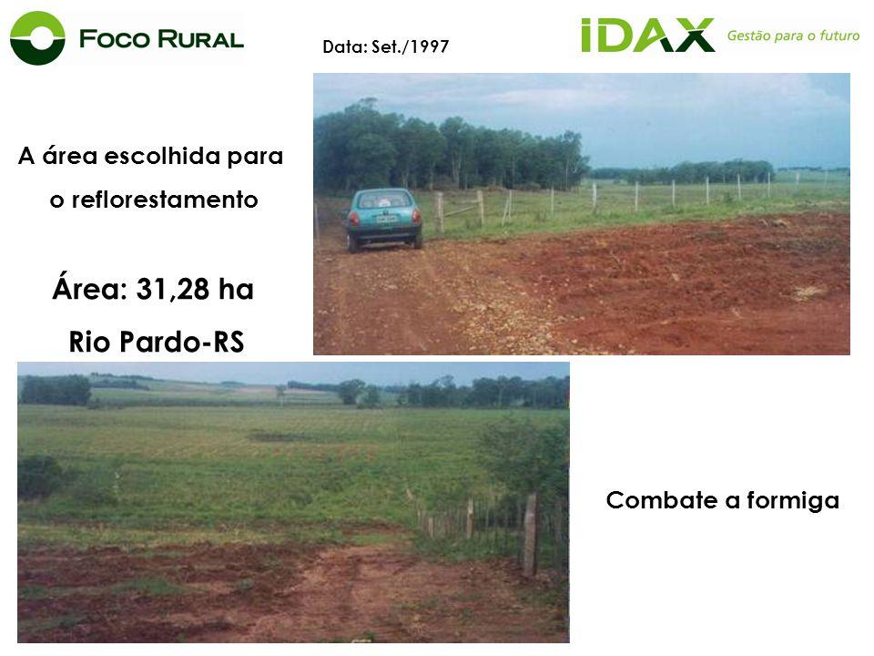 A área escolhida para o reflorestamento Área: 31,28 ha Rio Pardo-RS Data: Set./1997 Combate a formiga