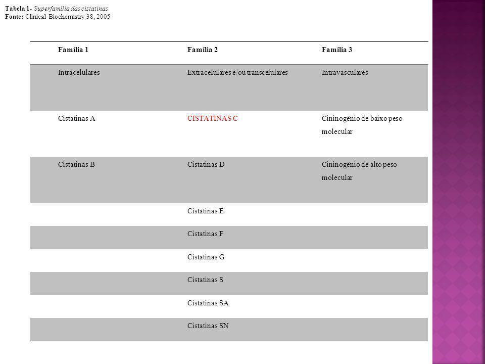 Família 1Família 2Família 3 IntracelularesExtracelulares e/ou transcelularesIntravasculares Cistatinas ACISTATINAS C Cininogênio de baixo peso molecul