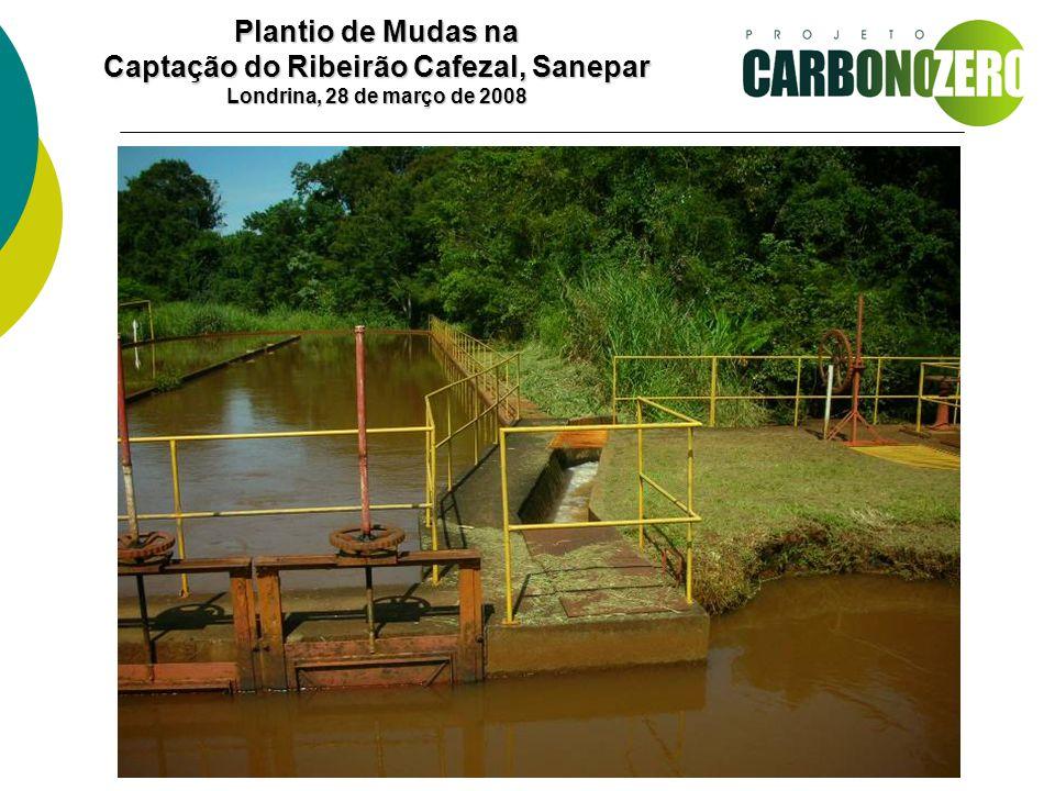 Plantio de Mudas na Captação do Ribeirão Cafezal, Sanepar Londrina, 28 de março de 2008