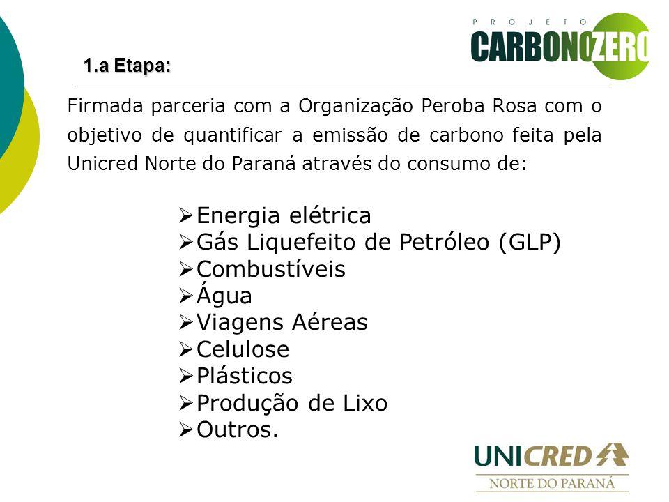  Energia elétrica  Gás Liquefeito de Petróleo (GLP)  Combustíveis  Água  Viagens Aéreas  Celulose  Plásticos  Produção de Lixo  Outros.