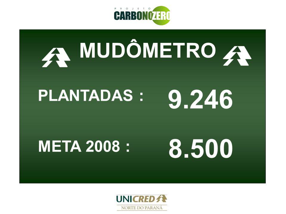 9.246 MUDÔMETRO META 2008 : PLANTADAS : 8.500