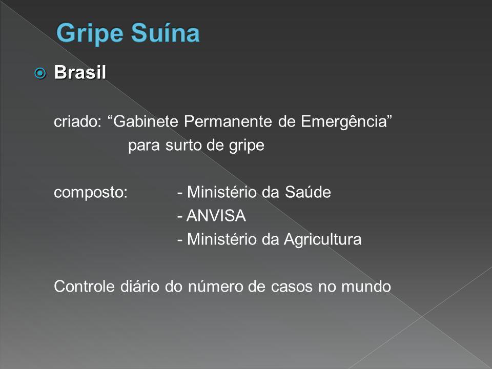 """ Brasil criado: """"Gabinete Permanente de Emergência"""" para surto de gripe composto: - Ministério da Saúde - ANVISA - Ministério da Agricultura Controle"""
