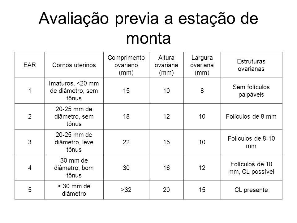 Avaliação previa a estação de monta EARCornos uterinos Comprimento ovariano (mm) Altura ovariana (mm) Largura ovariana (mm) Estruturas ovarianas 1 Imaturos, <20 mm de diâmetro, sem tônus 15108 Sem folículos palpáveis 2 20-25 mm de diâmetro, sem tônus 181210Folículos de 8 mm 3 20-25 mm de diâmetro, leve tônus 221510 Folículos de 8-10 mm 4 30 mm de diâmetro, bom tônus 301612 Folículos de 10 mm, CL possível 5 > 30 mm de diâmetro >322015CL presente