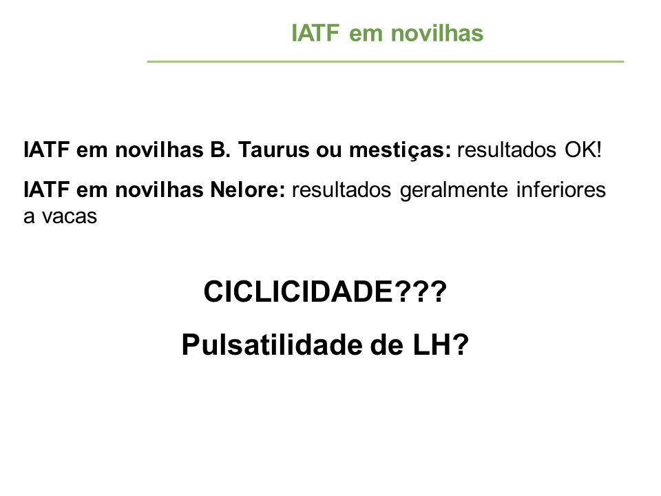 IATF em novilhas IATF em novilhas B. Taurus ou mestiças: resultados OK! IATF em novilhas Nelore: resultados geralmente inferiores a vacas CICLICIDADE?