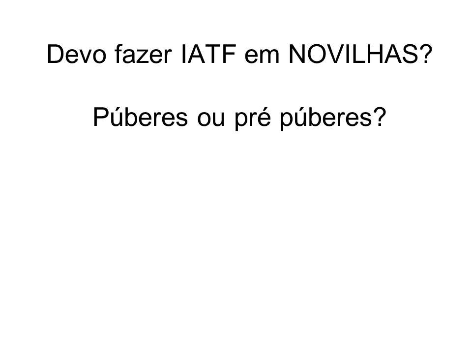 Devo fazer IATF em NOVILHAS? Púberes ou pré púberes?