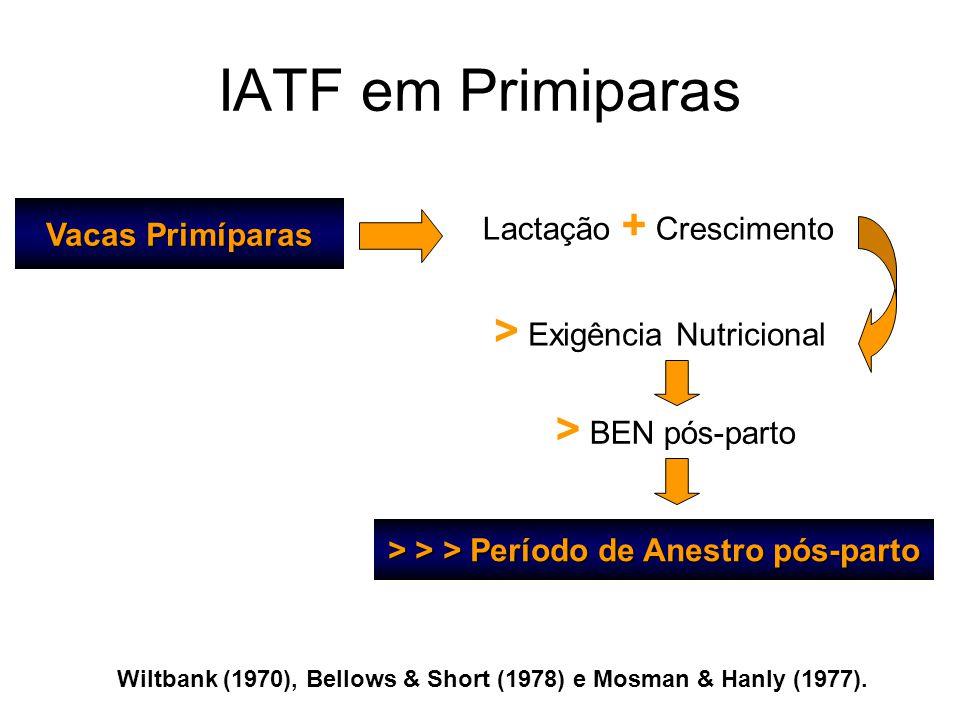 Wiltbank (1970), Bellows & Short (1978) e Mosman & Hanly (1977). Vacas Primíparas Lactação + Crescimento > Exigência Nutricional > BEN pós-parto > > >