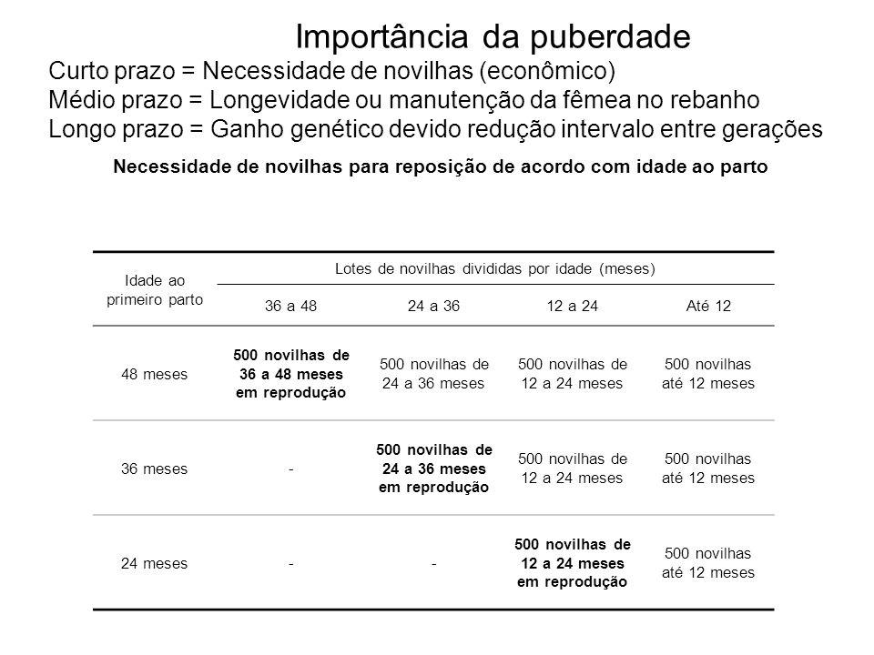 Idade ao primeiro parto Lotes de novilhas divididas por idade (meses) 36 a 4824 a 3612 a 24Até 12 48 meses 500 novilhas de 36 a 48 meses em reprodução