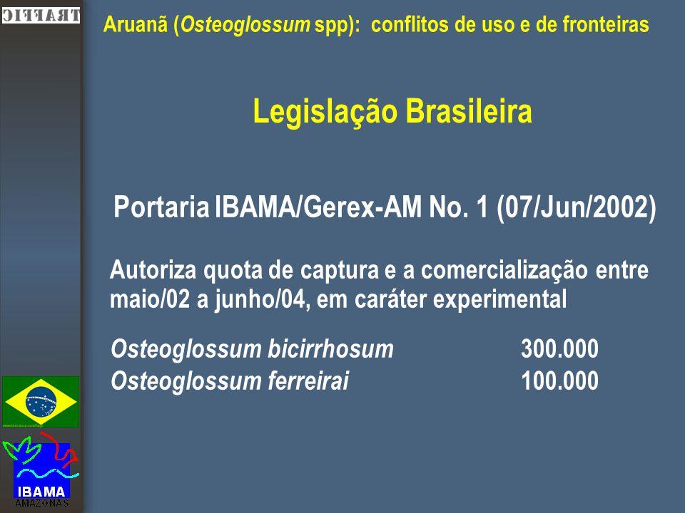 Aruanã ( Osteoglossum spp): conflitos de uso e de fronteiras Legislação Brasileira Portaria IBAMA/Gerex-AM No.