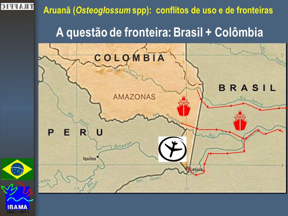Aruanã ( Osteoglossum spp): conflitos de uso e de fronteiras A questão de fronteira: Brasil + Colômbia C O L O M B I A