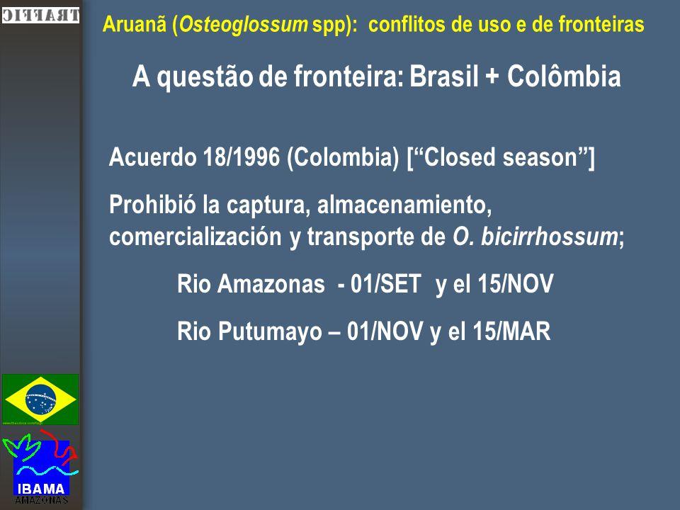 """Aruanã ( Osteoglossum spp): conflitos de uso e de fronteiras A questão de fronteira: Brasil + Colômbia Acuerdo 18/1996 (Colombia) [""""Closed season""""] Pr"""