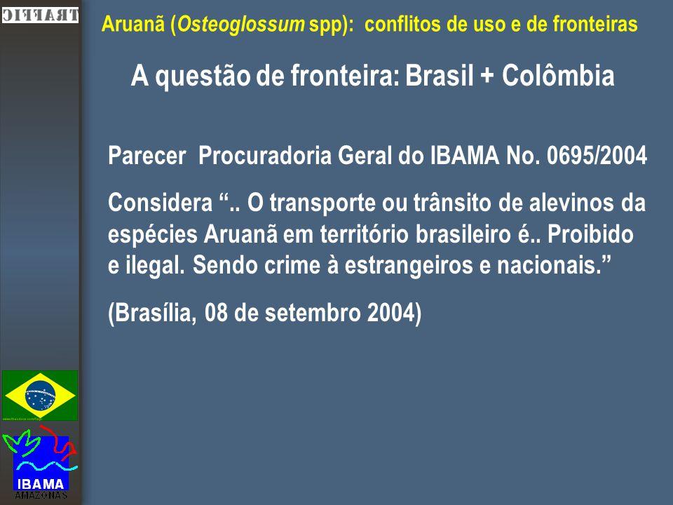 Aruanã ( Osteoglossum spp): conflitos de uso e de fronteiras A questão de fronteira: Brasil + Colômbia Parecer Procuradoria Geral do IBAMA No.