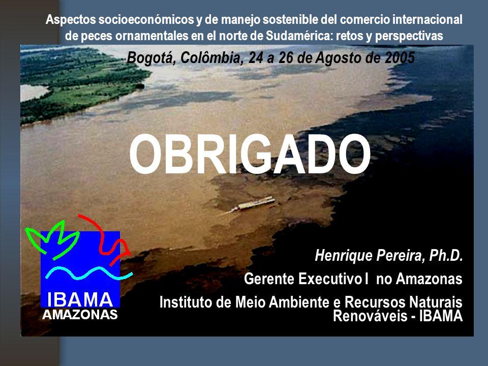 Aspectos socioeconómicos y de manejo sostenible del comercio internacional de peces ornamentales en el norte de Sudamérica: retos y perspectivas Bogotá, Colômbia, 24 a 26 de Agosto de 2005 OBRIGADO Henrique Pereira, Ph.D.