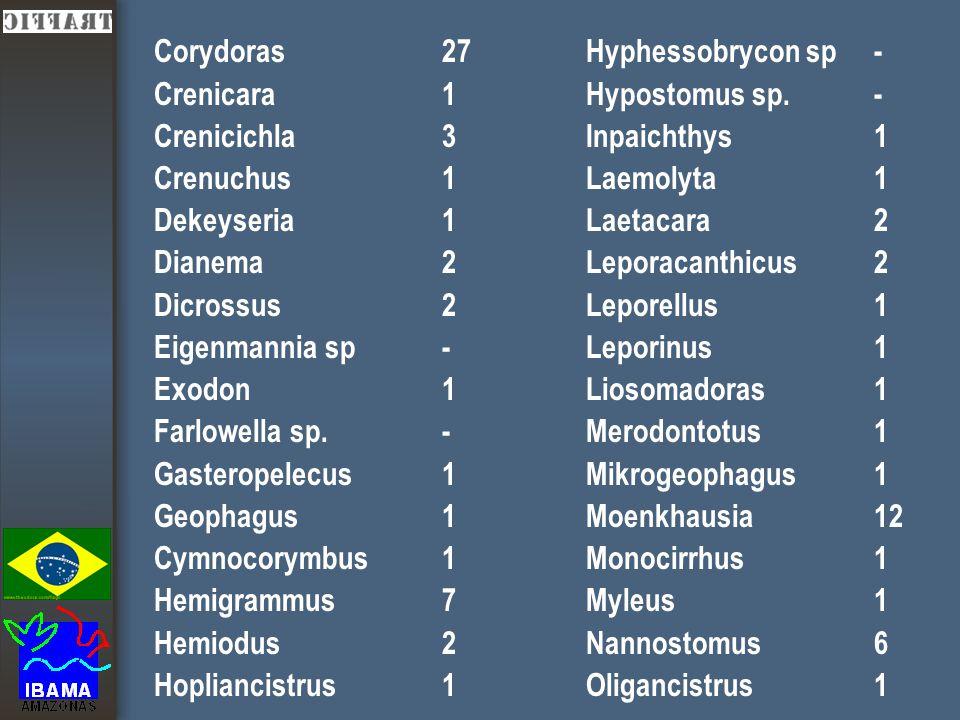 Corydoras27 Crenicara1 Crenicichla3 Crenuchus1 Dekeyseria1 Dianema2 Dicrossus2 Eigenmannia sp- Exodon1 Farlowella sp.- Gasteropelecus1 Geophagus1 Cymnocorymbus1 Hemigrammus7 Hemiodus2 Hopliancistrus1 Hyphessobrycon sp- Hypostomus sp.- Inpaichthys1 Laemolyta1 Laetacara2 Leporacanthicus2 Leporellus1 Leporinus1 Liosomadoras1 Merodontotus1 Mikrogeophagus1 Moenkhausia12 Monocirrhus1 Myleus1 Nannostomus6 Oligancistrus1