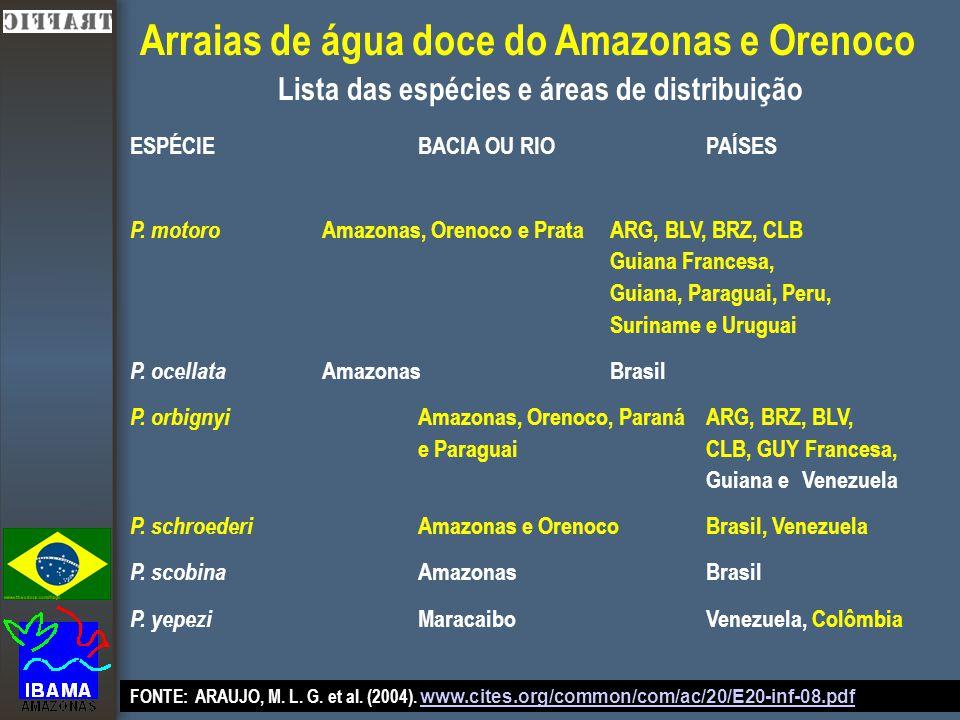 P. motoro Amazonas, Orenoco e PrataARG, BLV, BRZ, CLB Guiana Francesa, Guiana, Paraguai, Peru, Surinamee Uruguai P. ocellata AmazonasBrasil P. orbigny