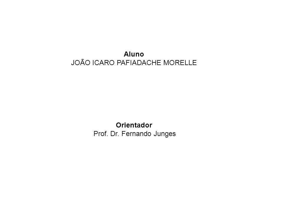 Aluno JOÃO ICARO PAFIADACHE MORELLE Orientador Prof. Dr. Fernando Junges