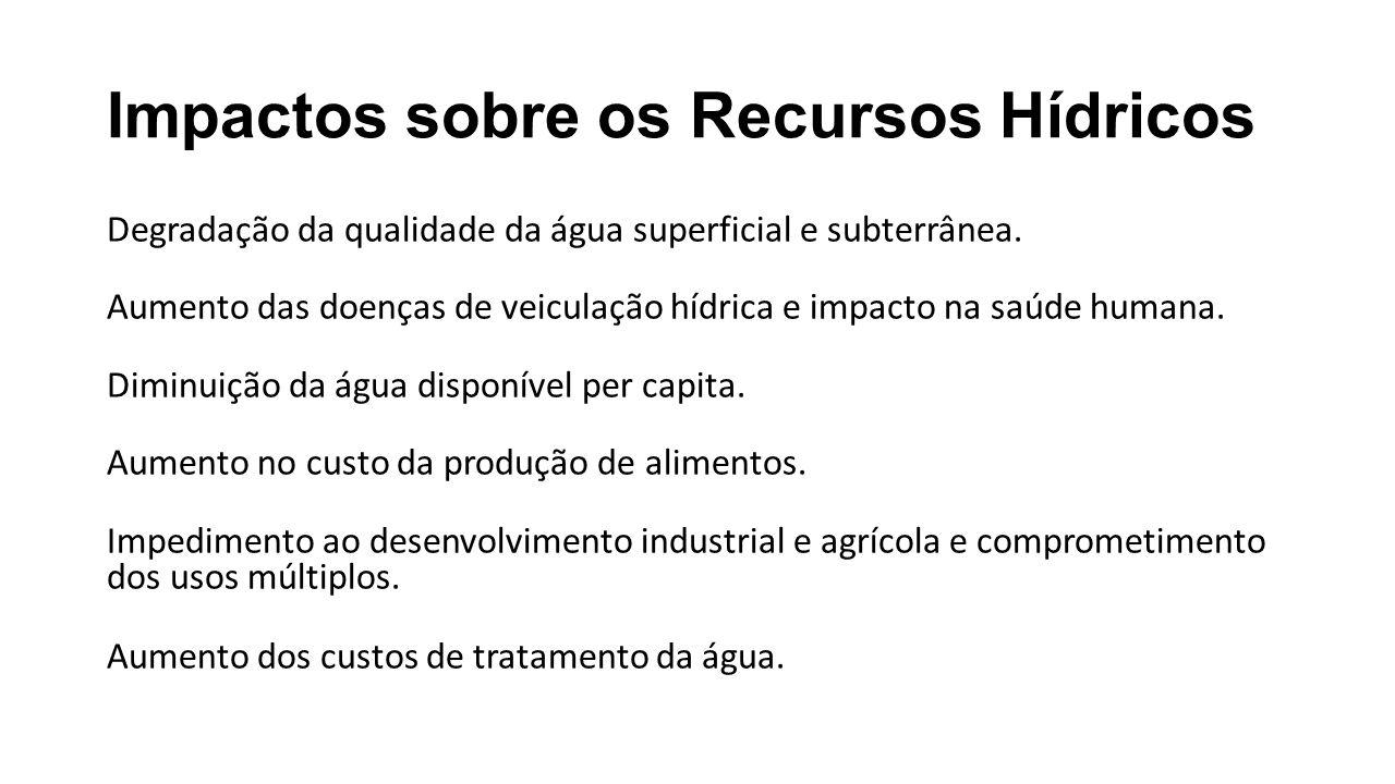Futuro dos Recursos Hídricos (Tundici, 2003) Conjunto de alterações conceituais na gestão: Descentralização da gestão; Implantação dos comitês de bacias hidrográficas; Desenvolver mecanismos de integração institucional; Ampliar a capacidade preditiva do sistema.