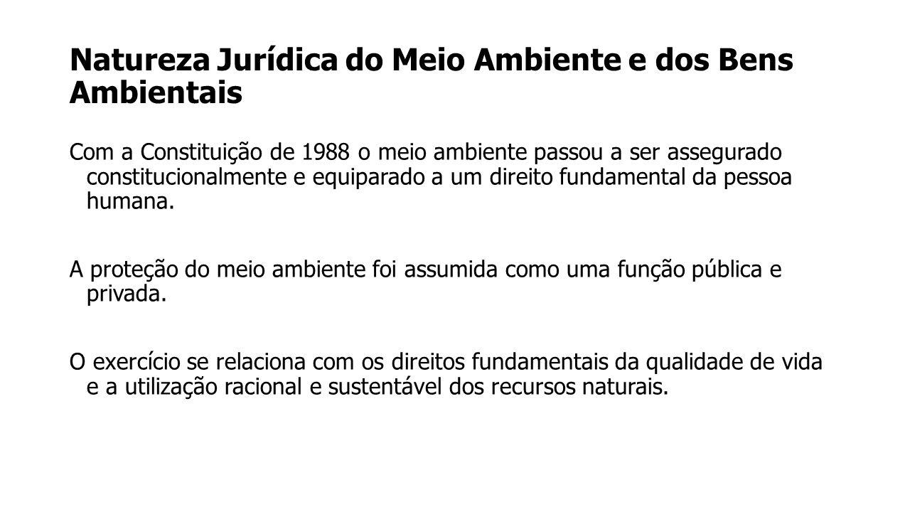 Natureza Jurídica do Meio Ambiente e dos Bens Ambientais A jurisprudência do Superior Tribunal Federal tem afirmado que o direito ao meio ambiente ecologicamente equilibrado é a consagração constitucional de um típico direito de terceira geração (RE nº 134297-8, SP, Relator Min.