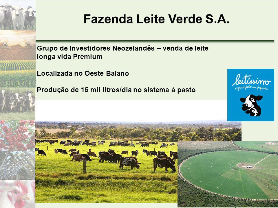 Fazenda Leite Verde S.A.