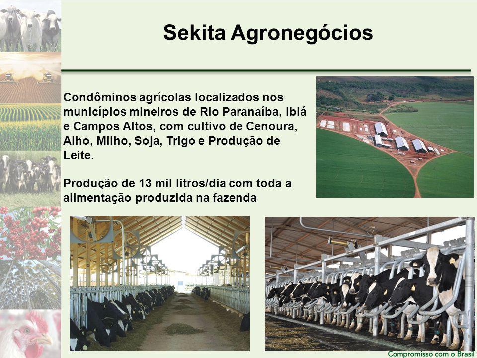 Sekita Agronegócios Condôminos agrícolas localizados nos municípios mineiros de Rio Paranaíba, Ibiá e Campos Altos, com cultivo de Cenoura, Alho, Milho, Soja, Trigo e Produção de Leite.