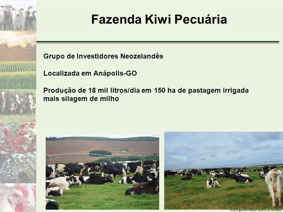 Fazenda Kiwi Pecuária Grupo de Investidores Neozelandês Localizada em Anápolis-GO Produção de 18 mil litros/dia em 150 ha de pastagem irrigada mais silagem de milho