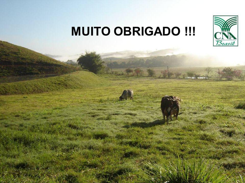 22 MUITO OBRIGADO !!!