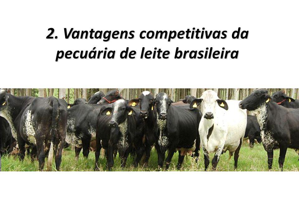 2. Vantagens competitivas da pecuária de leite brasileira