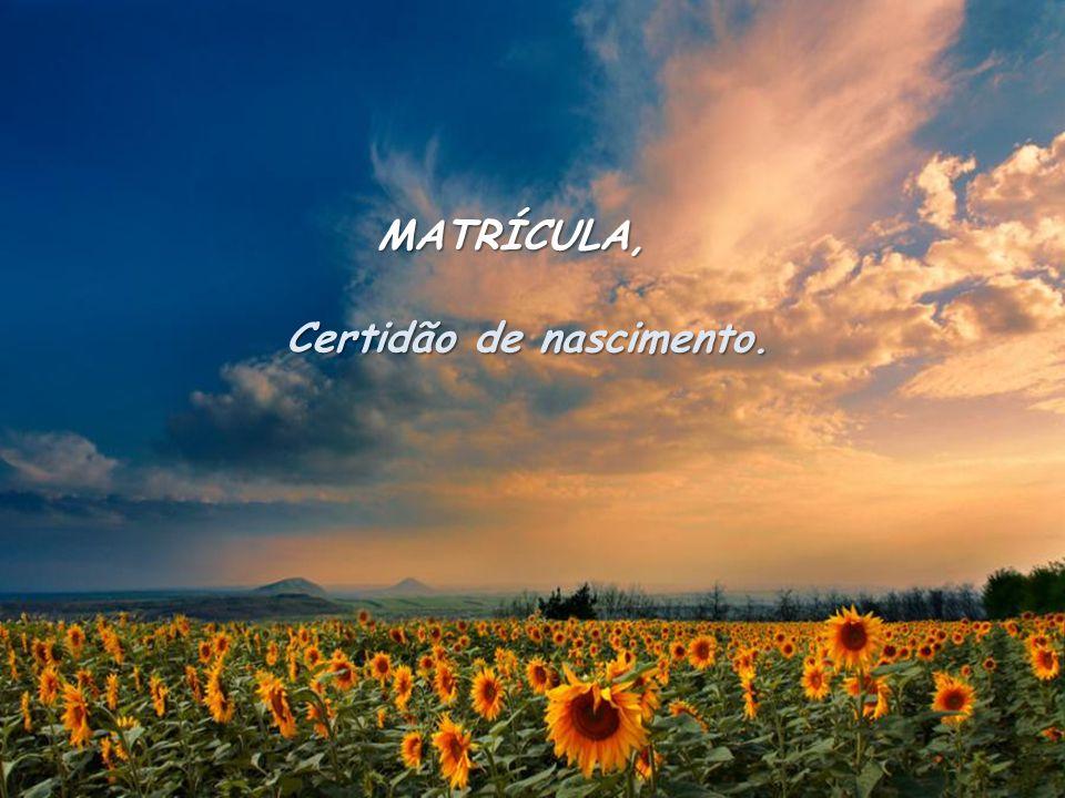 MATRÍCULA, Certidão de nascimento.
