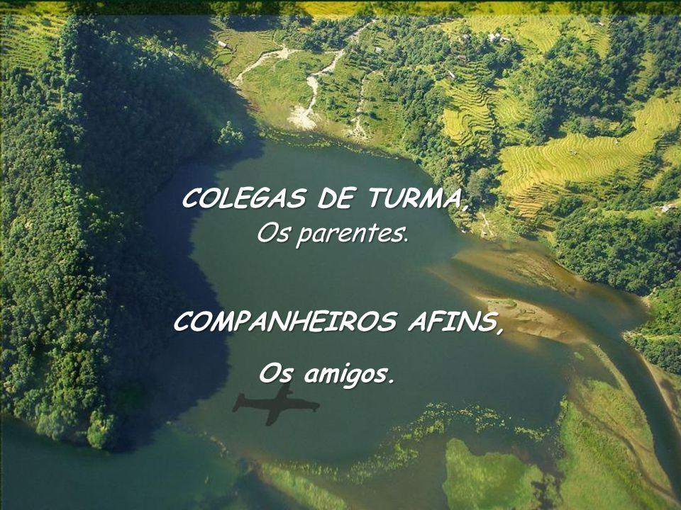COLEGAS DE TURMA, Os parentes. Os amigos. COMPANHEIROS AFINS,