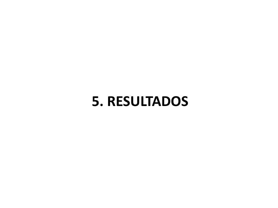 5. RESULTADOS