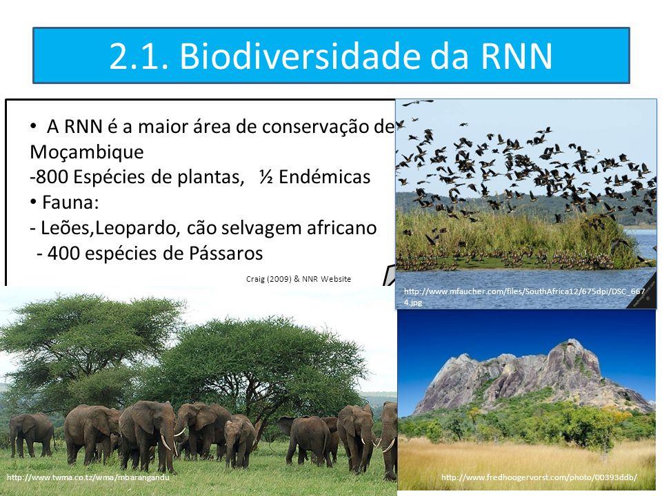 A RNN é a maior área de conservação de Moçambique -800 Espécies de plantas, ½ Endémicas Fauna: - Leões,Leopardo, cão selvagem africano - 400 espécies