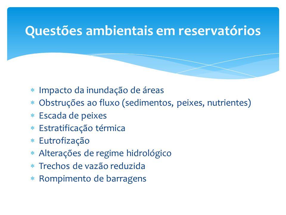  Impacto da inundação de áreas  Obstruções ao fluxo (sedimentos, peixes, nutrientes)  Escada de peixes  Estratificação térmica  Eutrofização  Al