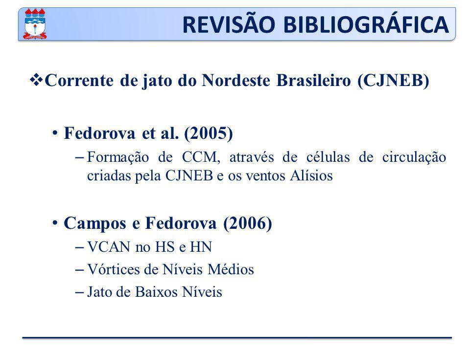 REVISÃO BIBLIOGRÁFICA  Corrente de jato do Nordeste Brasileiro (CJNEB) Fedorova et al.