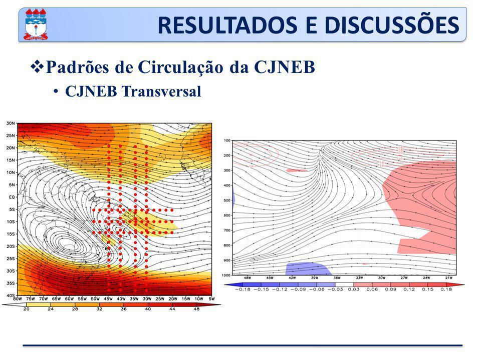 RESULTADOS E DISCUSSÕES  Padrões de Circulação da CJNEB CJNEB Transversal