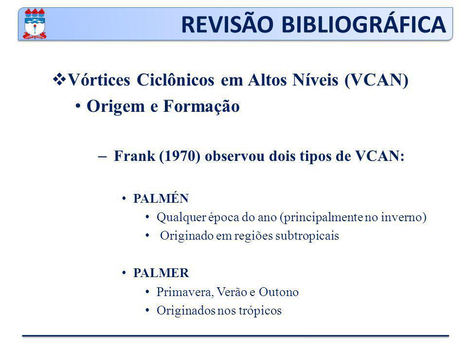 REVISÃO BIBLIOGRÁFICA  Corrente de jato Movimentos verticais na Corrente de Jato – Riehl et al.