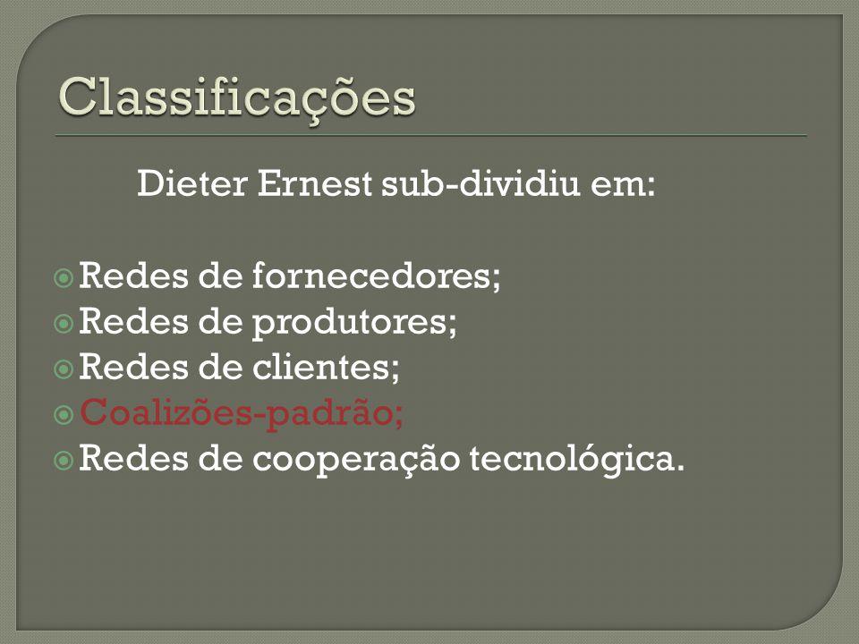 Dieter Ernest sub-dividiu em:  Redes de fornecedores;  Redes de produtores;  Redes de clientes;  Coalizões-padrão;  Redes de cooperação tecnológica.
