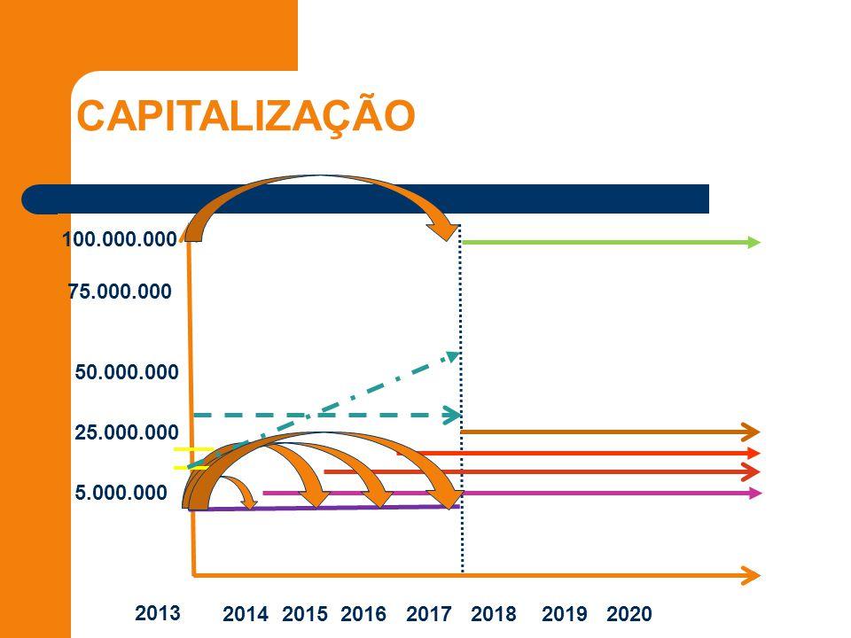 CAPITALIZAÇÃO 2013 2014 2015 2016 2017 2018 2019 2020 5.000.000 25.000.000 50.000.000 75.000.000 100.000.000