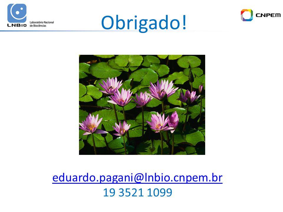 eduardo.pagani@lnbio.cnpem.br 19 3521 1099 Obrigado!