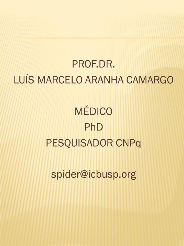 PROF.DR. LUÍS MARCELO ARANHA CAMARGO MÉDICO PhD PESQUISADOR CNPq spider@icbusp.org