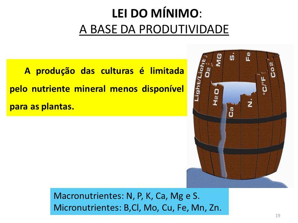 19 LEI DO MÍNIMO: A BASE DA PRODUTIVIDADE Macronutrientes: N, P, K, Ca, Mg e S. Micronutrientes: B,Cl, Mo, Cu, Fe, Mn, Zn. A produção das culturas é l