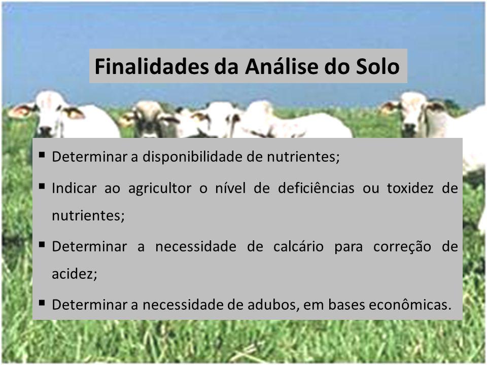  Determinar a disponibilidade de nutrientes;  Indicar ao agricultor o nível de deficiências ou toxidez de nutrientes;  Determinar a necessidade de