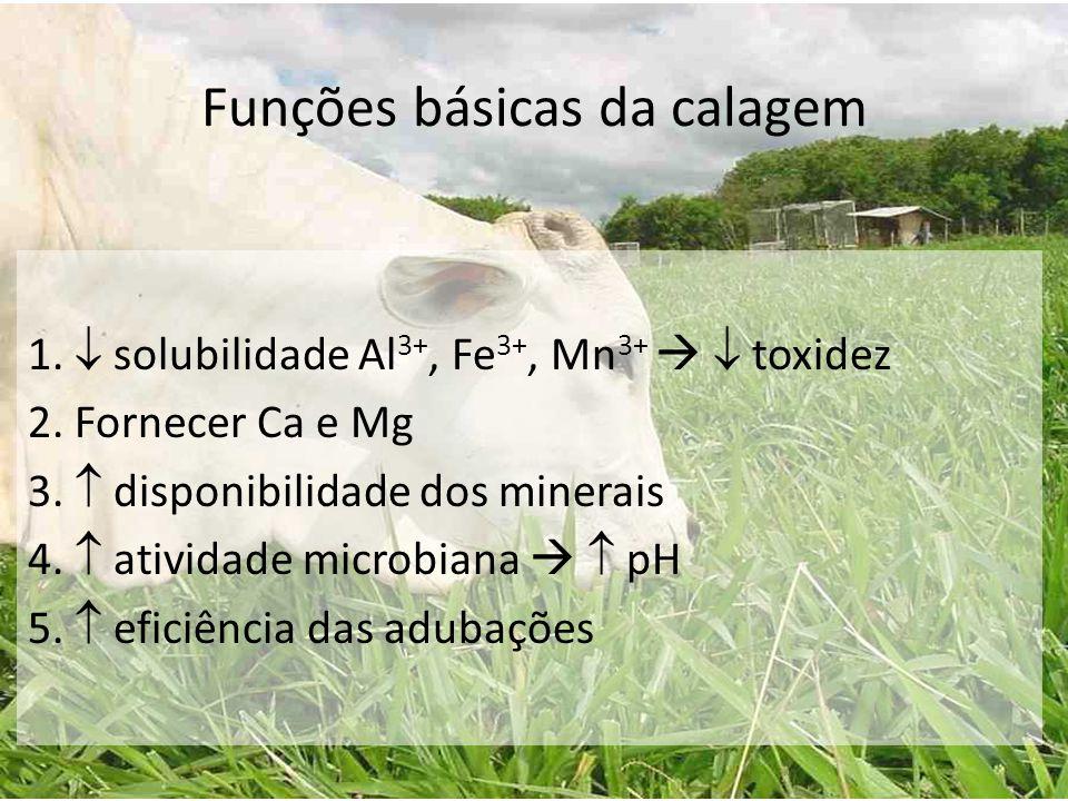 Funções básicas da calagem 1.  solubilidade Al 3+, Fe 3+, Mn 3+   toxidez 2. Fornecer Ca e Mg 3.  disponibilidade dos minerais 4.  atividade micr