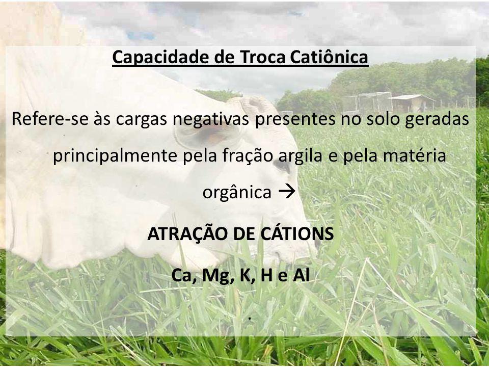 Capacidade de Troca Catiônica Refere-se às cargas negativas presentes no solo geradas principalmente pela fração argila e pela matéria orgânica  ATRA