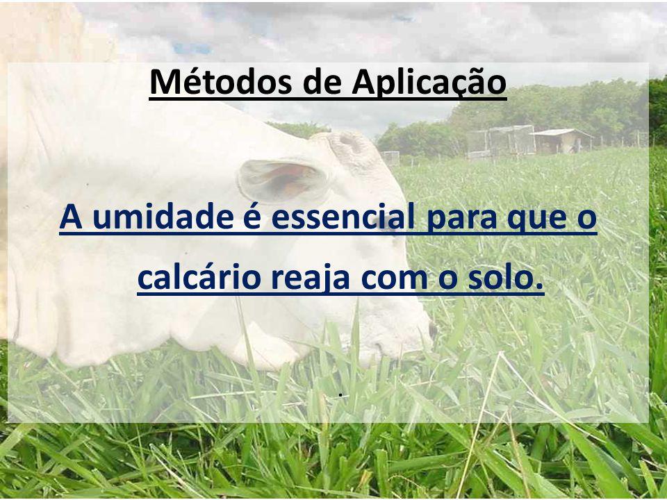 Métodos de Aplicação A umidade é essencial para que o calcário reaja com o solo..