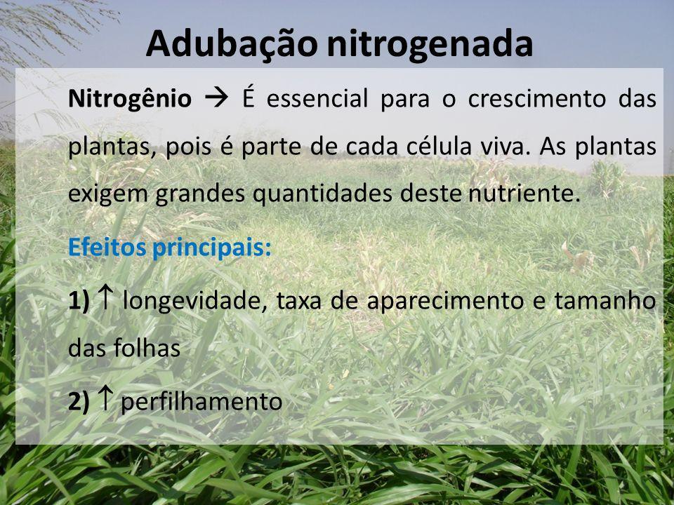Nitrogênio  É essencial para o crescimento das plantas, pois é parte de cada célula viva. As plantas exigem grandes quantidades deste nutriente. Efei