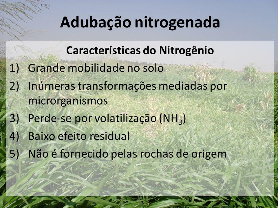 Características do Nitrogênio 1)Grande mobilidade no solo 2) Inúmeras transformações mediadas por microrganismos 3)Perde-se por volatilização (NH 3 )
