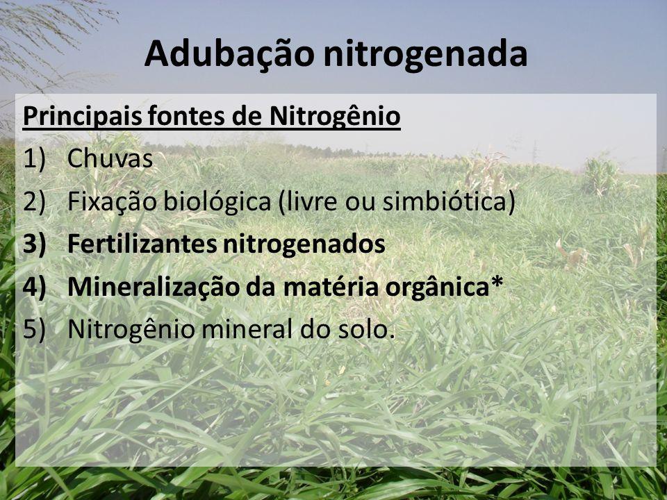 Principais fontes de Nitrogênio 1)Chuvas 2) Fixação biológica (livre ou simbiótica) 3)Fertilizantes nitrogenados 4)Mineralização da matéria orgânica*