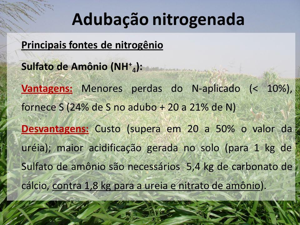 Principais fontes de nitrogênio Sulfato de Amônio (NH + 4 ): Vantagens: Menores perdas do N-aplicado (< 10%), fornece S (24% de S no adubo + 20 a 21%