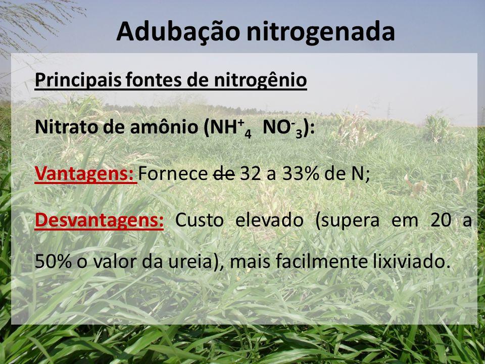 Principais fontes de nitrogênio Nitrato de amônio (NH + 4 NO - 3 ): Vantagens: Fornece de 32 a 33% de N; Desvantagens: Custo elevado (supera em 20 a 5
